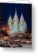 Lantern Bush Slc Temple Greeting Card