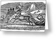 Laplander, C1785 Greeting Card