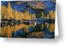 Larch Tree Reflection In Leprechaeun Lake  Greeting Card