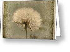 Large Dandelion Greeting Card