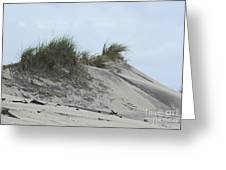 Large Dunes Greeting Card by Cathy Lindsey