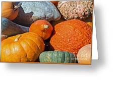 Large Edible Gourds Greeting Card