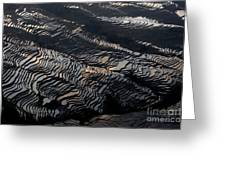 Large Scale Of Rice Terrace Greeting Card