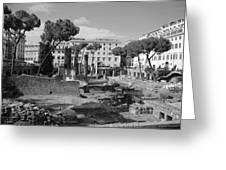 Largo Di Torre - Roma Greeting Card