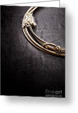 Lasso On Leather Greeting Card