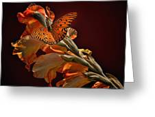 Last Colors Of Summer Greeting Card