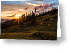 Last Light At Cedar Greeting Card by Chad Dutson