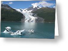 Last Of The Ice Bergs  Greeting Card