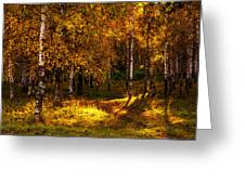 Last Song Of The Autumn 1 Greeting Card