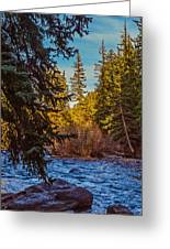 Late Afternoon Along The South Platte Greeting Card