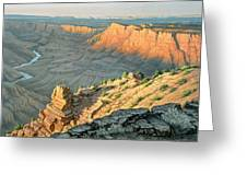 Late Afternoon-desert View Greeting Card by Paul Krapf