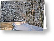Late Afternoon In The Snow Greeting Card