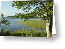 Late Afternoon On Worden Pond Greeting Card