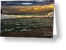 Late Afternoon Swimmer Greeting Card