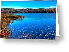 Late Autumn On Loon Lake Greeting Card