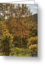 Late Autumn Walk Greeting Card