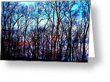 Late Cold Afternoon Greeting Card by Jose Lopez