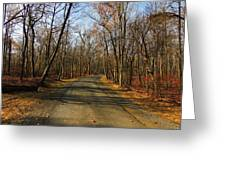 Late Fall At Cheesequake State Park Greeting Card
