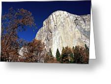 Late Light On Face Of  El Capitan Greeting Card