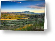 Late Spring Time View Greeting Card by Robert Bales