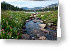 Late Summer Mountain Landscape Greeting Card