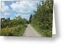 Late Summer Trail Greeting Card