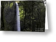 Latourell Falls Greeting Card