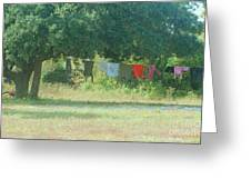 Laundry Hanging From The Tree Greeting Card