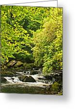 Lauragh River West Cork Greeting Card