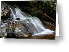 Laurel Falls Great Smoky Mountains Greeting Card