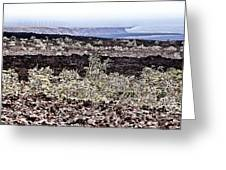 Lava Landscaped Greeting Card