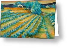 Lavendar Fields Greeting Card