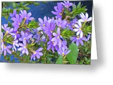 Lavendar Melody Greeting Card