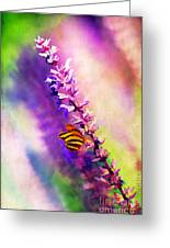 Lavender And Butterlies Greeting Card
