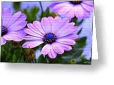 Lavender Beauties Greeting Card