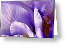 Lavender Beauty Minimalism Greeting Card