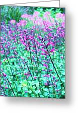 Lavender Color Flowers Greeting Card