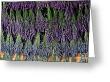 Lavender Drying Rack Greeting Card