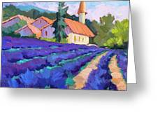 Lavender Field In St. Columne Greeting Card