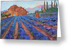 Lavender Field Provence Greeting Card