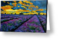 Lavender Fields At Dusk Greeting Card