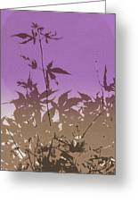 Purple Haiku Greeting Card