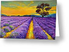 Lavender Greeting Card by Ivailo Nikolov
