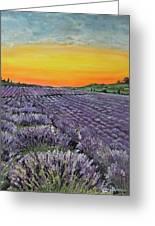 Lavender Oasis Greeting Card