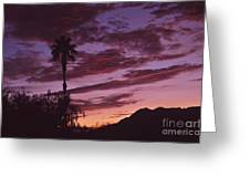 Lavender Red And Gold Sunrise Greeting Card