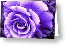 Lavender Rose With Brushstrokes Greeting Card
