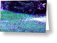 Lawn Blue Greeting Card