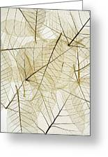 Layered Leaves Greeting Card