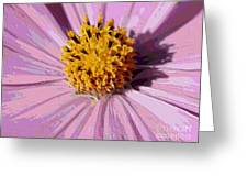 Layers Of A Cosmos Flower Greeting Card