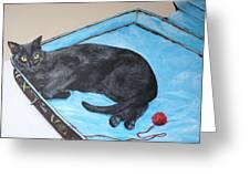 Lazy Black Cat Greeting Card